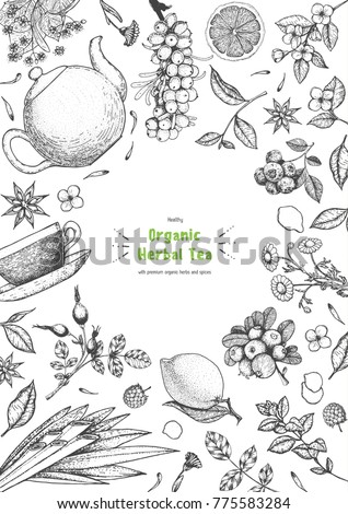 Herbal Tea shop frame vector illustration. Vector design with herbal tea ingredients. Hand drawn sketch collection. Vertical poster. Engraved style.