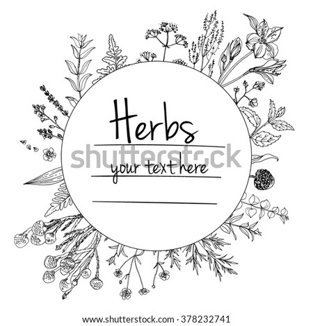 herbs and flowers painted black