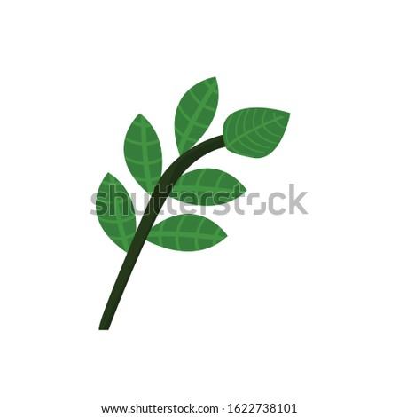 Herbs simple herbs 30 Illustration Cilp Art vector
