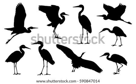 heron silhouettes on the white