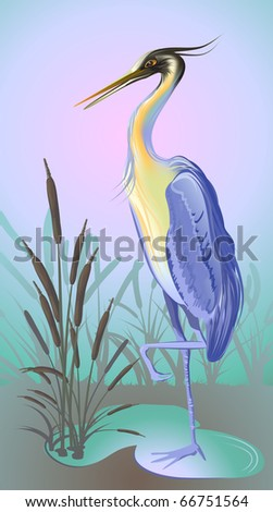 heron with reed and water