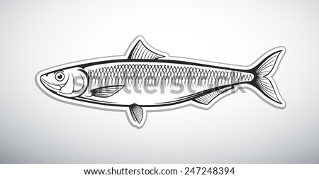 herring fish outline vector illustration