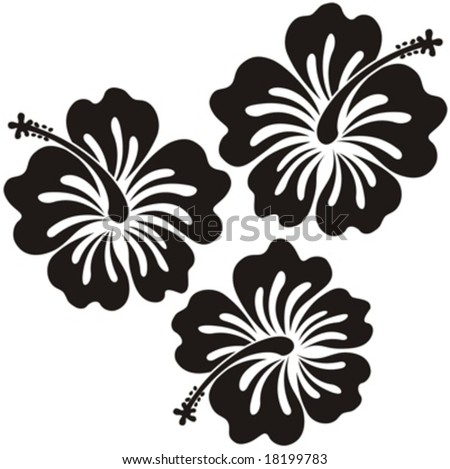 Hibiscus Flower Picture on Hibiscus Flowers Ilustration In Vector Format Very Easy To Edit