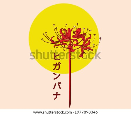 higanbana flower that