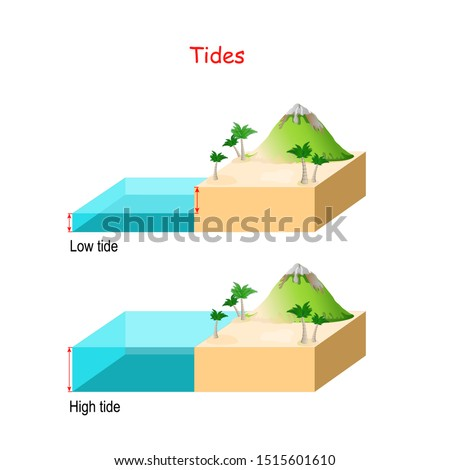 High and low tides. Landscape with mountain, sea and palm trees. water ​​level