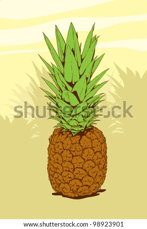 High Detailed Illustration Of A Pineapple