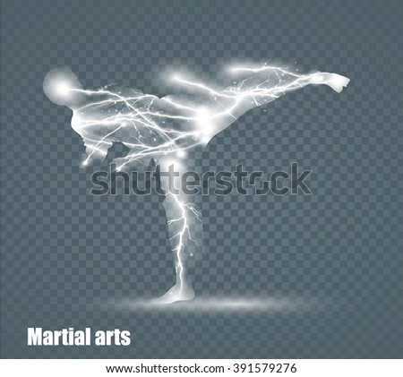 high kick   martial art  flying