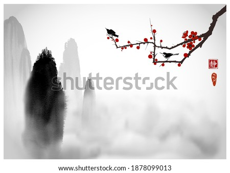 high misty mountains with