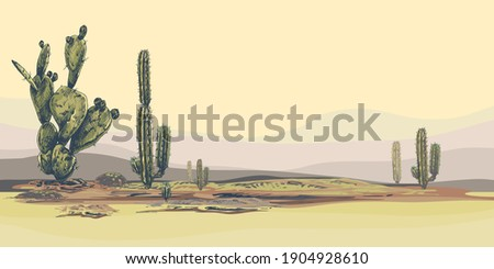 High quality horizontal desert landscape background with cacti, sunset, natural  stylish, vector background with tropical flowers, suculents, perfect for wallpapers, web page backgrounds, surface text