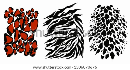 Highly detailed animal skin vector. Animal skin set, great design for any purposes. Isolated vector design. Tiger skin background. Skin care icon set. Symbol collection. Textile design