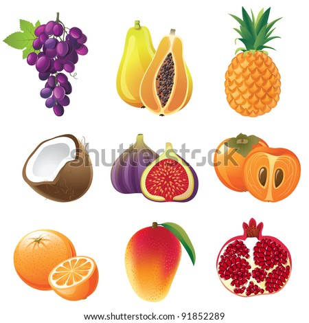 Highly detailed fruits icons set