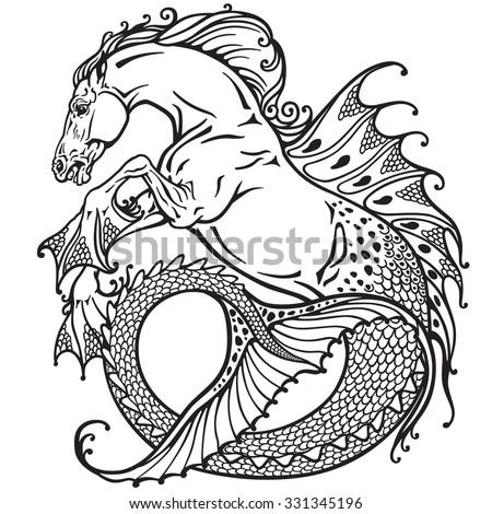 hippocampus or kelpie