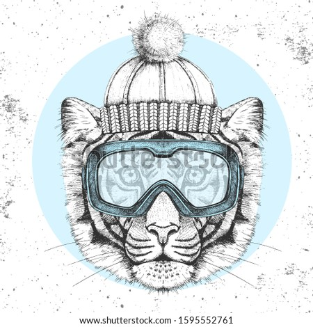 hipster animal tiger in winter