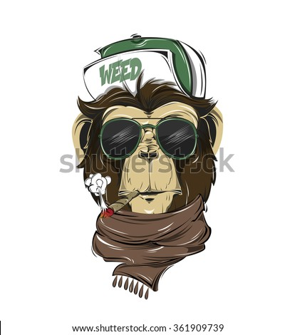 stock-vector-hipster-monkey-print-for-t-shirt-monkey-modern-street-style-attributes-vector-art-monkey-head