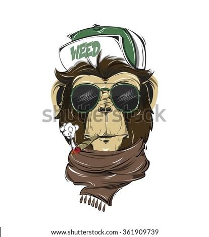 Shutterstock HIPSTER monkey print for t-shirt. Monkey modern street style attributes. Vector art. Monkey head for poster.