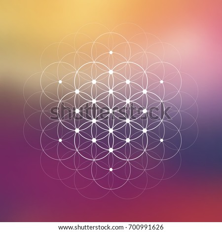 Hipster scientific illustration with flower of life - the interlocking circles ancient symbol in front of blurry background.