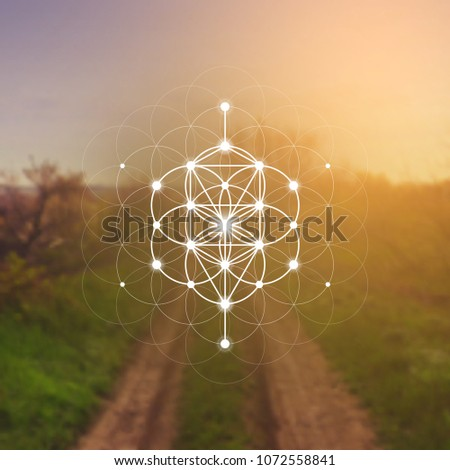 Hipster scientific illustration with tree of life - the interlocking circles  flower of life ancient symbol in front of blurry photo background.
