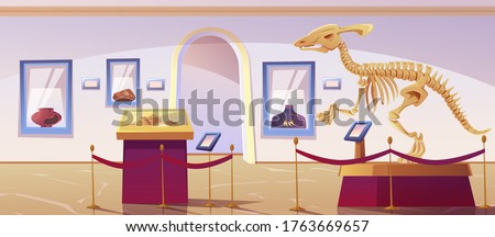 Historical museum interior with dinosaur skeleton and archeological exhibits. Vector cartoon illustration of exhibition of paleontology and archeology, prehistoric animals and ancient artefacts