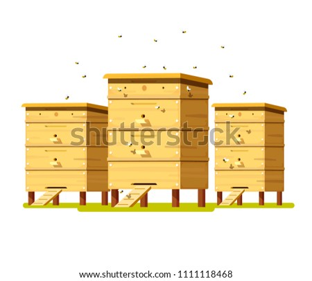 Hives on the field with flowers. Apiary with colorful bee hives and a swarm of bees. Blooming flowers with bees.