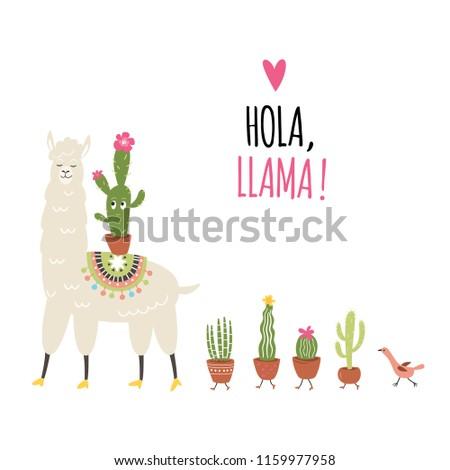 Hola , Llama. Vector illustration, cute llama and cactuses