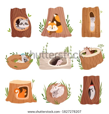 Holes in tree. Home hollow for wild animals trunk leaves treetops birds and squirrel vector characters Foto stock ©