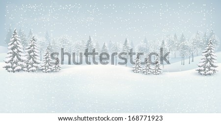 holiday winter landscape