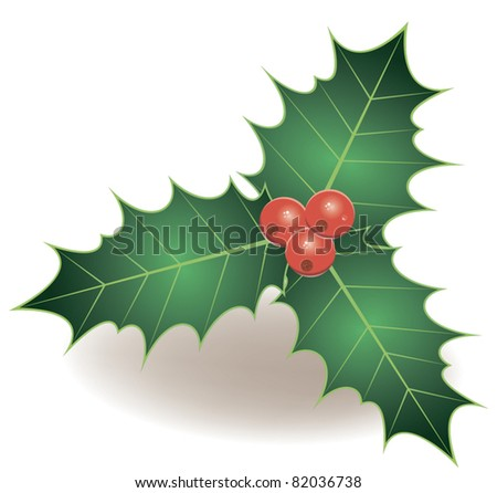 holly - stock vector