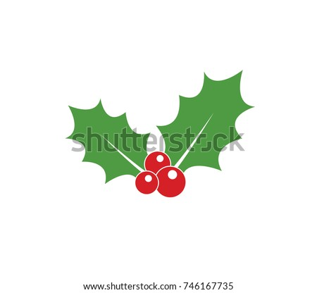 Holly berry icon. Christmas icon. Vector holly berry icon.  Holly berry leaves illustration.