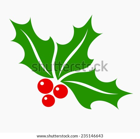 Holly berry leaves and fruits, Christmas symbol