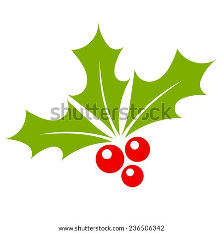 Holly berry vector - stock vector