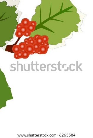 holly leaves with red berries decoration