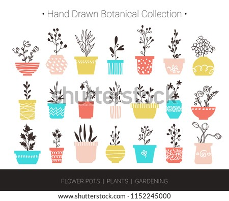 Home flowers, plants in pots. Botanical hand drawn vector design elements for logo design, branding, fashion textile print, invitation card. Cute cartoon illustrations isolated on white background.