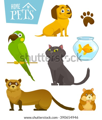 Shutterstock Home pets set isolated on white, cat dog parrot goldfish hamster ferret, cartoon vector illustration, domesticated animals