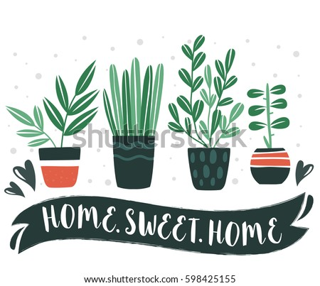 HOME.SWEET.HOME. Set of cute Flowers in vases. Vector collection. House plants.