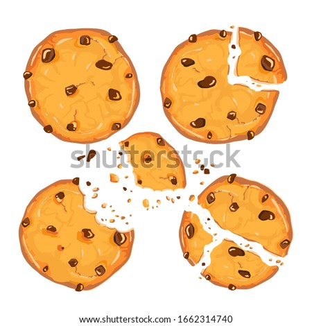 Homemade choco chip cookies with chocolate crisps isolated on white background. Bitten, broken, cookie crumbs. Vector illustration in cartoon flat style. Sweet food cookies icon. Biscuit, small baked.