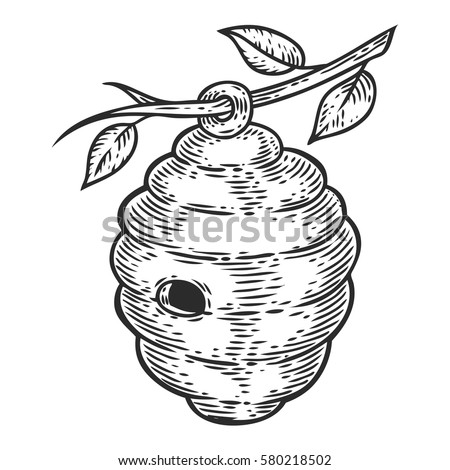 Honey bee house hive. Engraved organic hand drawn sketch illustration. packaging food, label, banner, poster, branding. Stylish design with sketch illustration of hive.