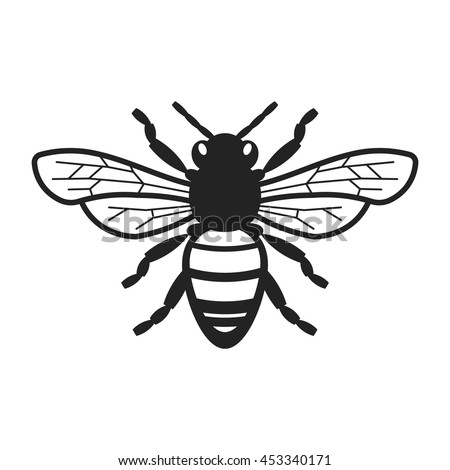 bee vector design with unique and clean look ez canvas