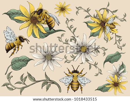 Honey bees and flowers elements, retro hand drawn etching shading style design, colorful tone