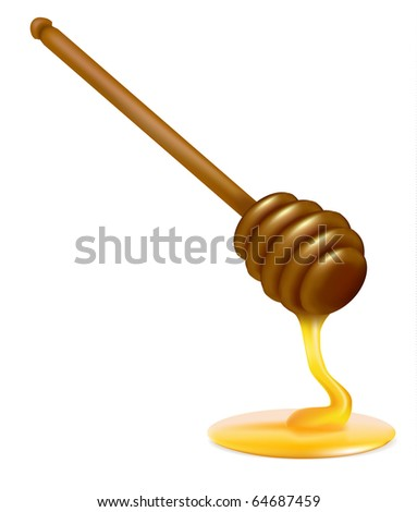 Honey dipper. Photo-realistic vector illustration