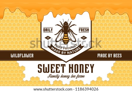 Honey label and packaging design template with bee, honeycombs and dripping honey for apiary and beekeeping  products, banding and identity.