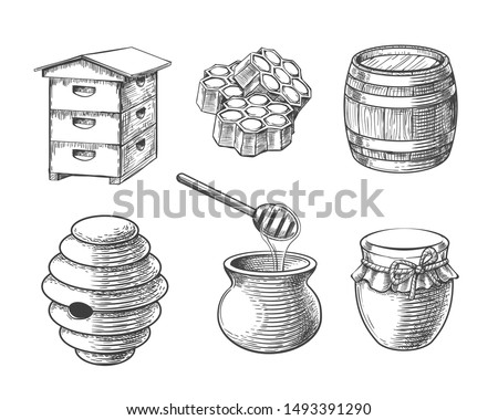 Honey sketch vector elements. Hand drawn honeycomb sweets and jar, vintage barrel for beeswax and honeypot, beehives for domestic and wild bees in engraving style Сток-фото ©