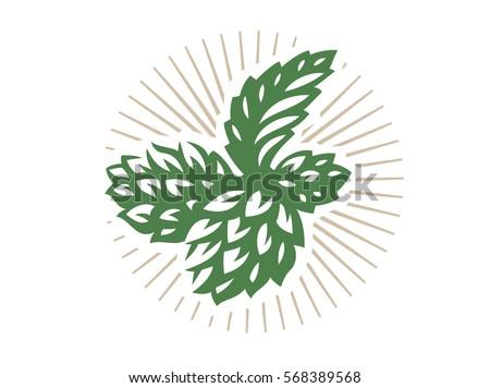 Hop - vector illustration, design on white background.