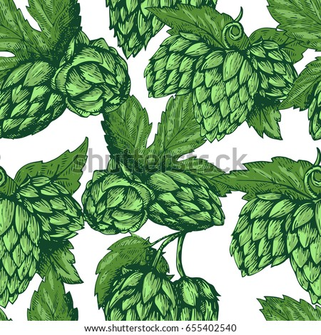Hop vector seamless pattern. Hand drawn artistic beer green hops with leaves on white background. Vintage wallpaper