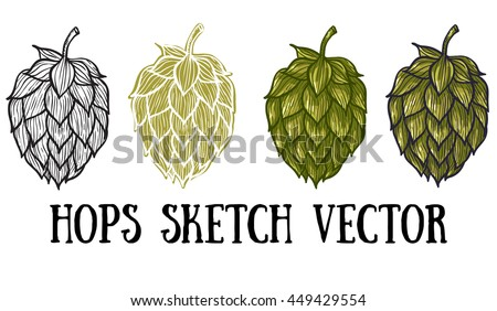 Hops vector visual graphic icons or logos, ideal for beer, stout, lager, bitter labels & packaging.
