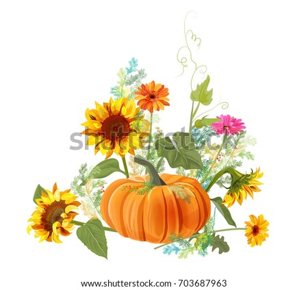 Horizontal Autumn Border Orange Pumpkin Yellow Sunflowers Gerbera Daisy Flower Small Green