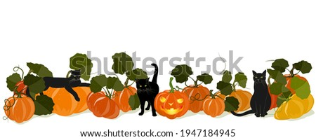 How To Create A Coloring Book Jack O Lantern Clipart Black And White Stunning Free Transparent Png Clipart Images Free Download