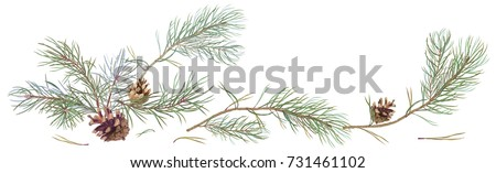 horizontal border with pine