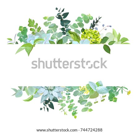 Horizontal botanical vector design banner. Baby blue eucalyptus, succulents,green hydrangea, wildflowers, various plants, leaves and herbs.Natural card or frame. All elements are isolated and editable