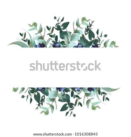 horizontal botanical vector