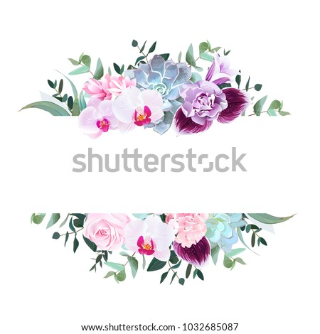 horizontal botanical vector